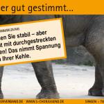 SCV_Werbekarten
