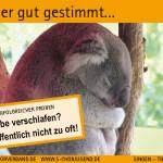 SCV_Werbekarten9